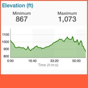 A partir del minuto 33 y pico comenzaron las subidas aunque aún no muy empinadas. Hacia el minuto 40 cada pico era una loma y su respectiva bajada.